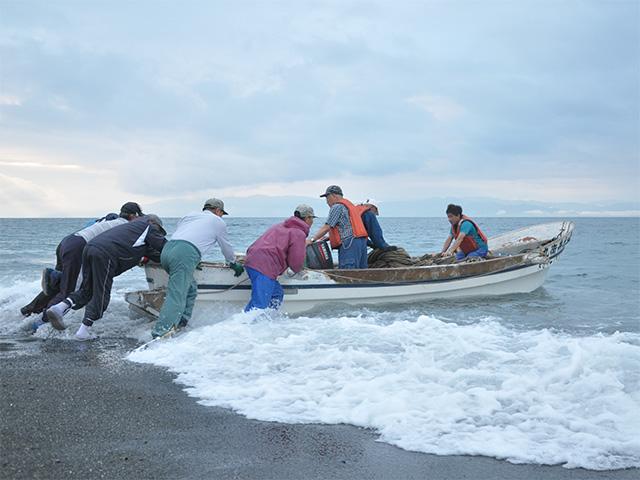 地引網出漁