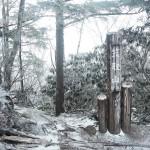 初冬、兄の初テント泊にオススメの雁坂峠〜奥秩父縦走路〜笠取山 Day 2