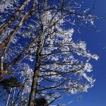初冬、兄の初テント泊にオススメの雁坂峠〜奥秩父縦走路〜笠取山 Day 1