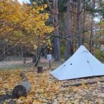 初冬、長野・群馬県境への山旅Day 1: 湯ノ丸山・烏帽子岳を周回 / 市民の森キャンプ場テント泊